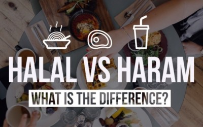 The implications of Halal certification: from the product to its use